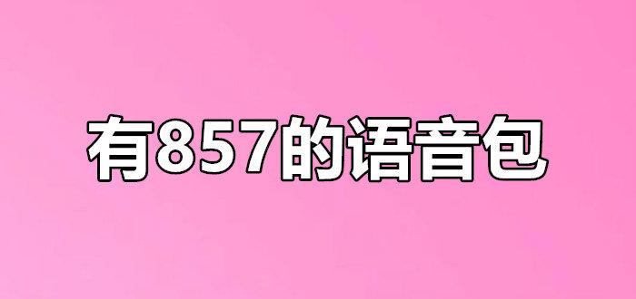 有857的语音包