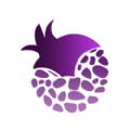 紫石榴应用商店官方版