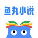 鱼丸小说最新版